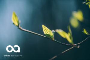 Bakgrunnsbilde med logo Online Accounting
